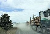 forestry-truck-dusty-road.jpg