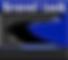 Logo HSC  panatoone reflex blue . copy.p