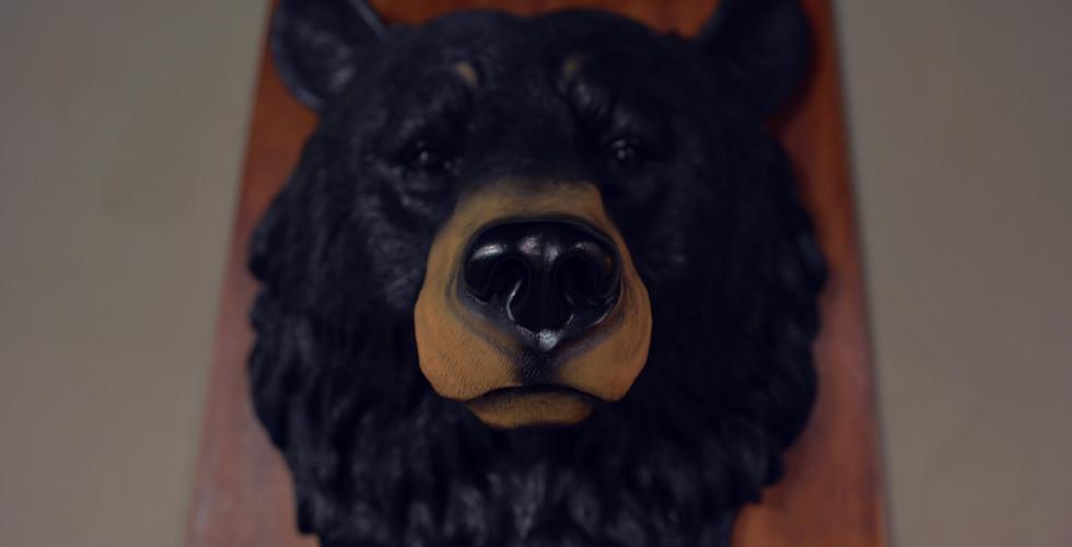 Bear-Head.jpg