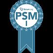 psmi-1.png