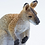 Thumbnail: Wallaby Figurine