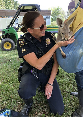 A Maryland police officer feeds treat to a baby red kangaroo