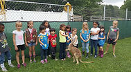 Girl scouts feeding a young kangaroo