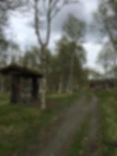 Vikinggravene på Fekjo