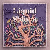 LIQUID SALOON