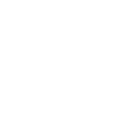 ICONO_INSTABIKERS-02.png