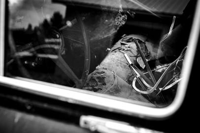 Déchéance automobile