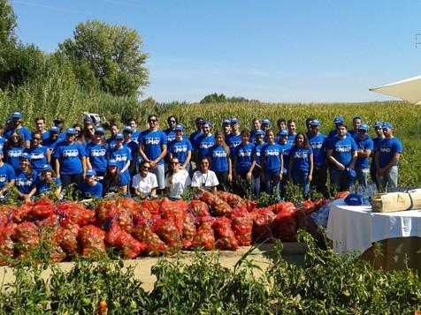 Agroglobal Solidária