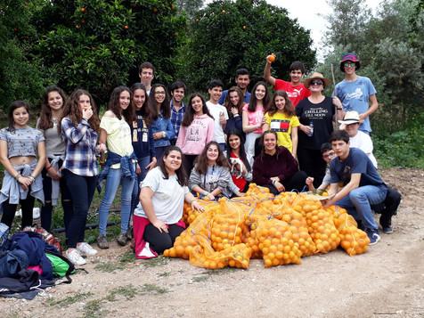 Acção de Restolho - Agrupamento de Escolas da Chamusca