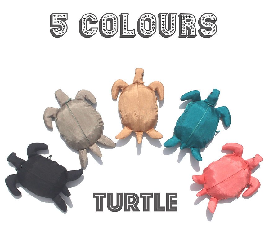 Turtle 5 colours.jpg