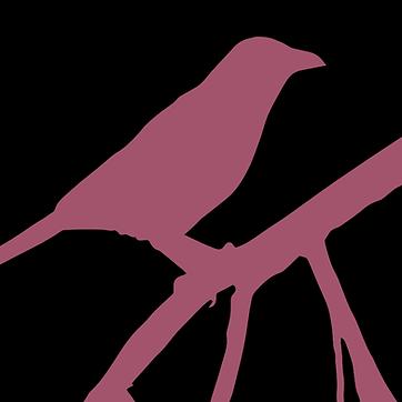 The Pink Ravyn 4.png