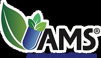 AMS _ American Medic