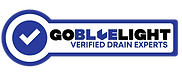 Go BlueLight Drain Experts Badge - Seatt
