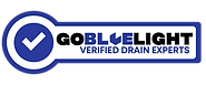 Go BlueLight Drain Experts - Seattle, WA