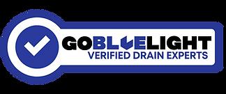 Go BlueLight Drain Experts - Seattle, WA