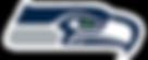 Beacon Plumbing Go BlueLight Seattle Seahawks