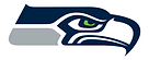 Beacon Plumbing Go BlueLight Seattle Seahawks