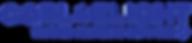 Go BlueLight - Trusted Plumbing Network