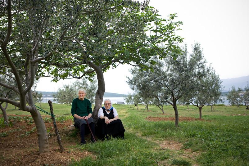 Due anziane riposano sotto un ulivo sulla spiaggia di Gornji Karin.