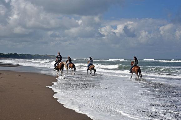 Salty Cowboy Bali Horseriding 020.jpeg