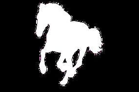 paardlogo.png