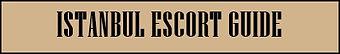 Istanbul escort guide banner.jpg