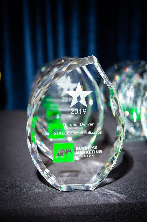 ANA Houston - Lantern Award