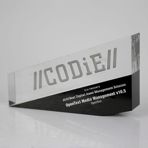 Codie-Large-02.jpg