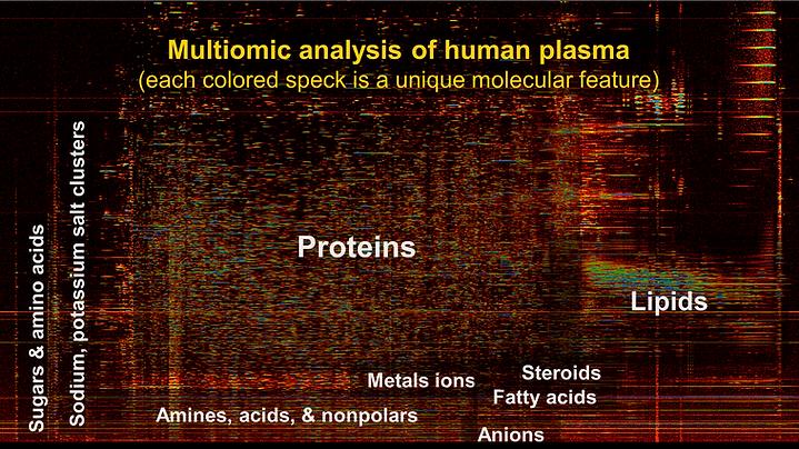 spectrogramLabeled_website.png