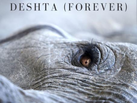Lançamentos: Deshta (Forever) | Lisa Gerrard and Jules Maxwell