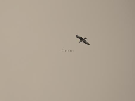 New Releases: Último Céu | Throe