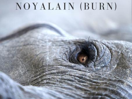 New Releases: Noyalain (Burn) | Lisa Gerrard and Jules Maxwell