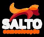 Logo-Salto-Comunicação-PNG-Claro.png