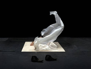 """Παράσταση του Δημ.Παπαϊωάννου - """"The Great Tamer"""" στη Στέγη Γραμμάτων και Τεχνών"""