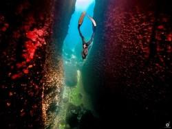 Έκθεση:«Με μια ανάσα:  Η Ελλάδα κάτω από την θάλασσα» στο Ίδρυμα Ευγενίδου