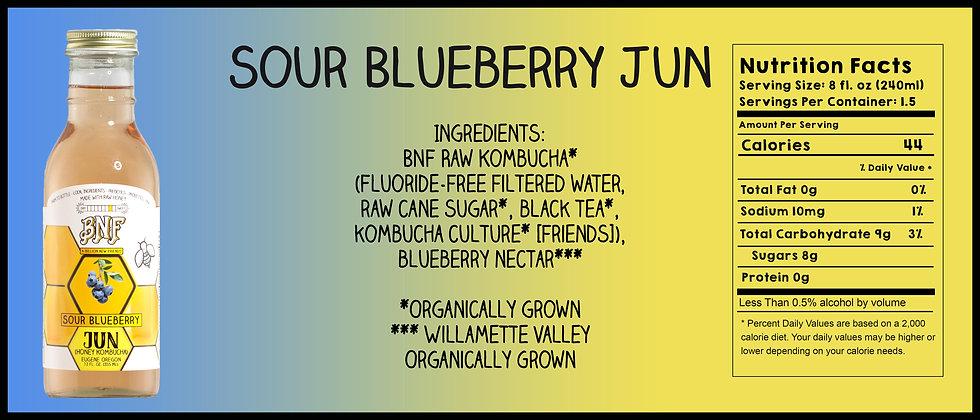 Sour Blueberry Jun.jpg