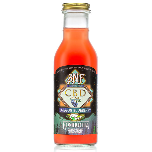 CBD Blueberry Kombucha Case of 12