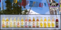 Mt Hood Prayer Flag Line Up.jpg