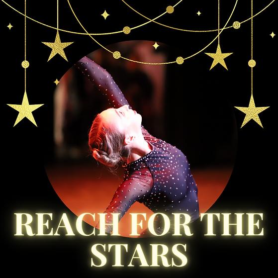 website - stars program.png