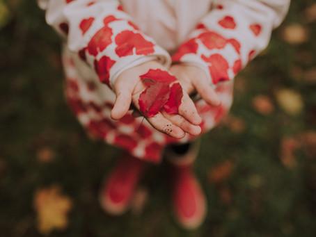 Faire une séance photo en automne : ou comment rendre ses enfants heureux ?