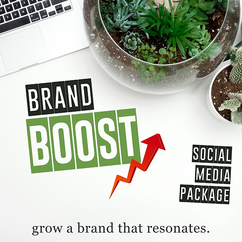 """""""Brand Boost"""" (For Businesses) Monthly Package"""