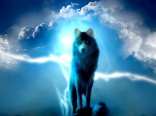 The Lone Wolf of Paranoid Conspiracy Media
