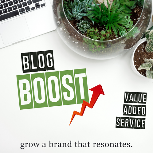 Blog Boost - Value Added Subscription Service