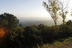 Amarim, overlooking the Galilee