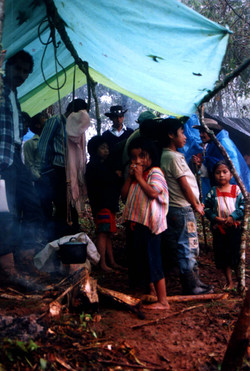 Refugee, NACLA