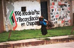 Año de la Paz, 1996