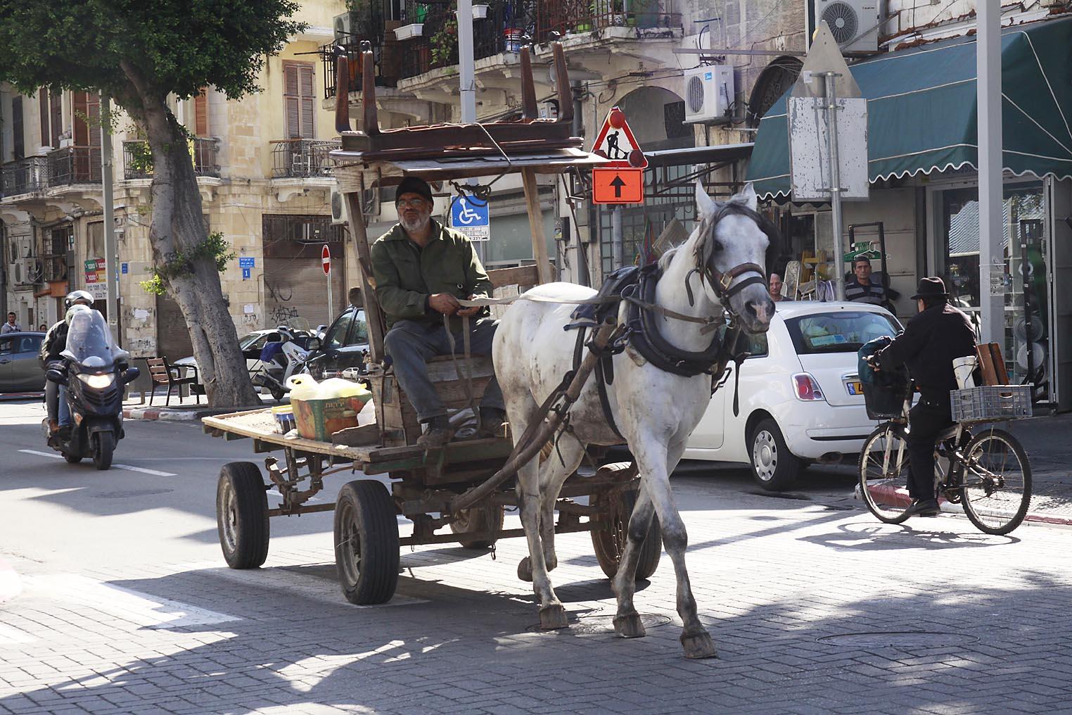 Occupied Tel Aviv