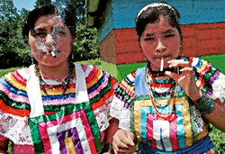 Smokers in Montes Azules 2000
