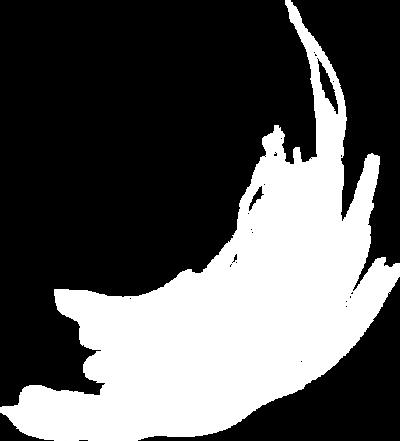 Безыоагмянный-3.png