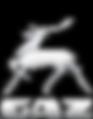 Logo GAZ Gray ENG.png